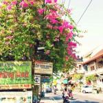 女一人旅のススメ バリ島ウブドの過ごし方  【Ubud, Bali】
