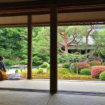 新緑の京都 青もみじのお寺でリラックス