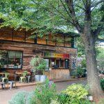 森の中にいるような緑あふれるカフェ